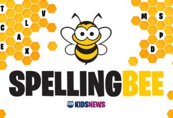 kidsnews-spellingbee-985x554